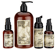 WEN by Chaz Dean Blow-out Essentials 4-piece Kit - A254703