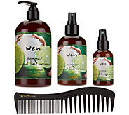 WEN by Chaz Dean Summer 16 oz. Cleansing Cond. w/6 & 2oz Mists - A285404