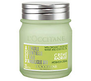 LOccitane Angelica Hydration Cream 1.7 oz. - A317020