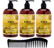 WEN by Chaz Dean Set of 3 Summer Cleansing Cond. w/ Comb