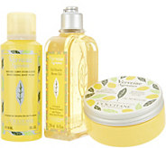 LOccitane Citrus Verbena 3-Piece Body Set - A308424