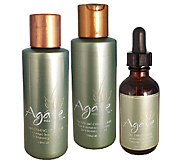 Agave Smoothing Trio - A332332