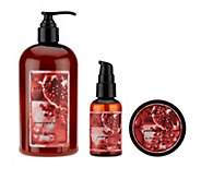 WEN by Chaz Dean 3-piece Cleanse Treat & Finish Collection - A257150