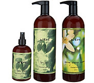 WEN by Chaz Dean Cleanse and Replenish Kit - A309458