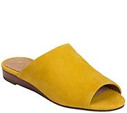 Aerosoles Leather Slide Sandals - Bitmap - A364267