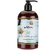 WEN by ChazDean 16 oz Choice of Fall Seasonal Cleansing Conditioner - A260073