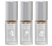Lisa Hoffman Tropical Fragrance Bead Trio - A411796