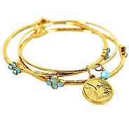 Hummingbird Coin Bangle Bracelet Set - C213733