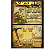 Gold Rush Coin Collection - C214189