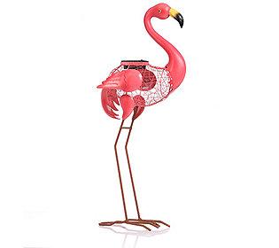 Solar-Flamingo