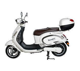 Elektro Roller Modell 195