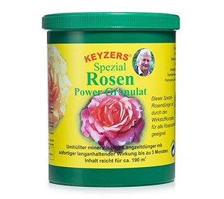 Spezialdünger für Rosen