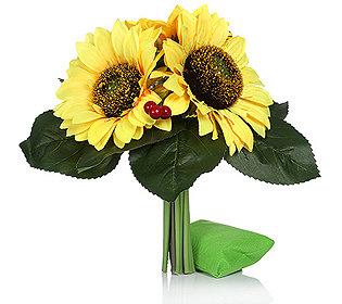 Sonnenblumen leuchtend