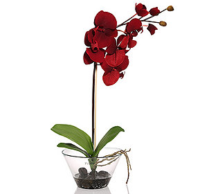 Kunstblumen Orchidee