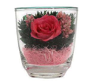 Rose im Glas ca. 9 cm