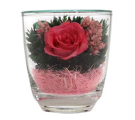 pur fleur echtblumen rose im konischen glas h ca 9cm. Black Bedroom Furniture Sets. Home Design Ideas