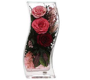 Rosen im Glas ca. 23 cm