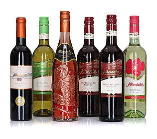 Weinprobe 6 Flaschen