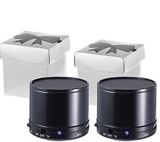 Craig Set of 2 Portable Bluetooth Speakers in Gift Box