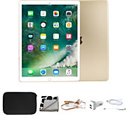 Apple iPad Air 2 32GB Wi-Fi with Accessories - E291722