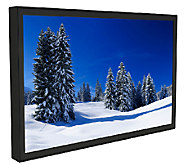 Peerless 47 Class All-Weather LED 1080p HDTV - E279523