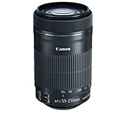 Canon EF-S 55-250mm f/4-5.6 IS STM Lens - E292433