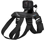 GoPro Fetch Dog Harness - E228641