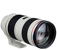 Canon EF 70-200mm f/2.8L USM with Case and Lens Hood - E249948