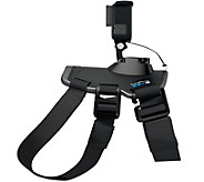 GoPro Fetch Dog Harness - E290665