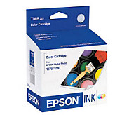 Epson T009201 Color Ink Cartridge - E207272