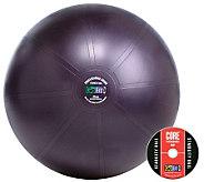 GoFit Pro 65cm Stability Ball & Core Training DVD - F195506
