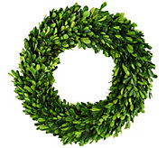 ED On Air 14 Preserved Boxwood Wreath by Ellen DeGeneres - H204900