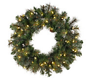 60 Prelit Modesto Mixed Pine Wreath by Vickerman - H287701