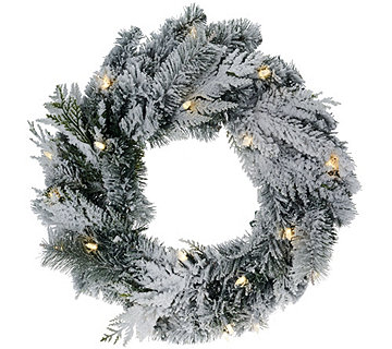 "ED On Air 24"" Lit Flocked Douglas Wreath by Ellen DeGeneres - H207102"