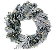 ED On Air 24 Lit Flocked Douglas Wreath by Ellen DeGeneres - H207102