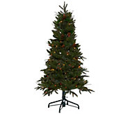 Bethlehem Lights 5 Prelit Sitka Spruce Christmas Tree - H208502