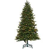 As Is Bethlehem Lights 7.5 Lancaster Pine Tree - H213902
