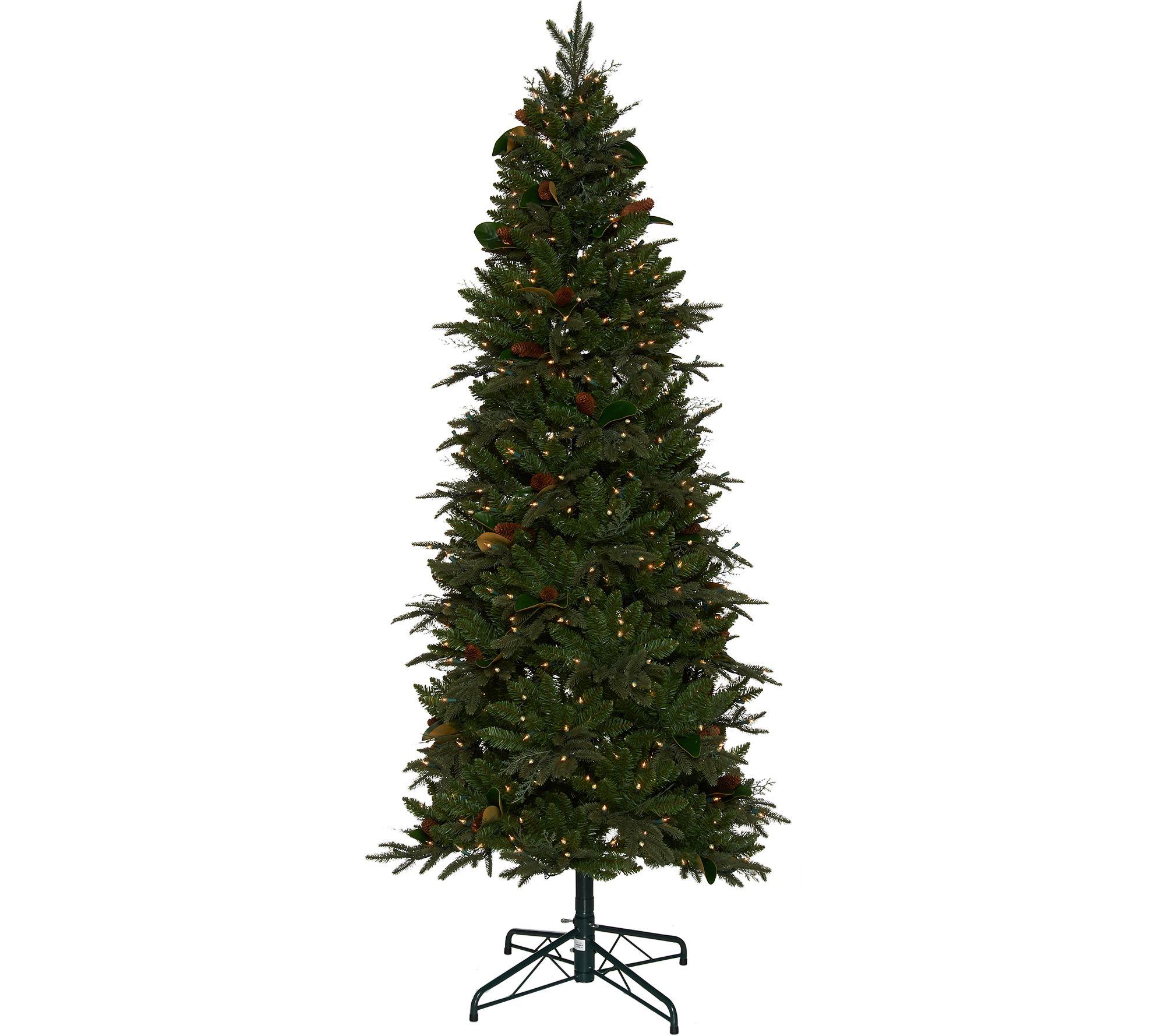 Bethlehem Lights 6.5' Sitka Spruce Christmas Tree