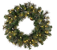 60 Prelit Modesto Pine Wreath w/ LED Lights byVickerman - H287703