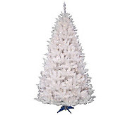 6-1/2 White Sparkle Spruce w/ Dura-Lit Lightsby Vickerman - H363803