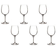 Luigi Bormioli 12.25-oz Palace Wine Tasting Glasses - Set of 6 - H364903