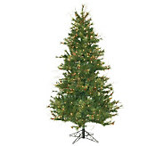 6-1/2 Prelit Slim Mixed Country Pine Tree by Vckerman - H143004