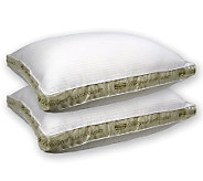 Beautyrest 2 Gusset Set of 2 Standard Pillows-X-Firm Support - H162104