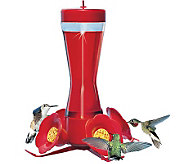 Pinch Waist Glass Hummingbird Feeder - H177604