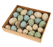 24-Piece Decorative Speckled Eggs by Valerie - H202205