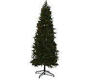 Bethlehem Lights 9 Sitka Spruce Christmas Tree - H208505