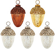 ED On Air S/5 Metallic Acorn Ornaments by Ellen DeGeneres - H209105