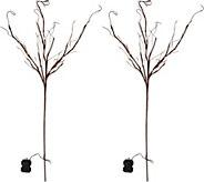Scott Living Set of 2 45 Illuminated Branch Picks - H212605