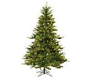 6-1/2 Prelit Mixed Country Pine Tree by Vickeran - H143006