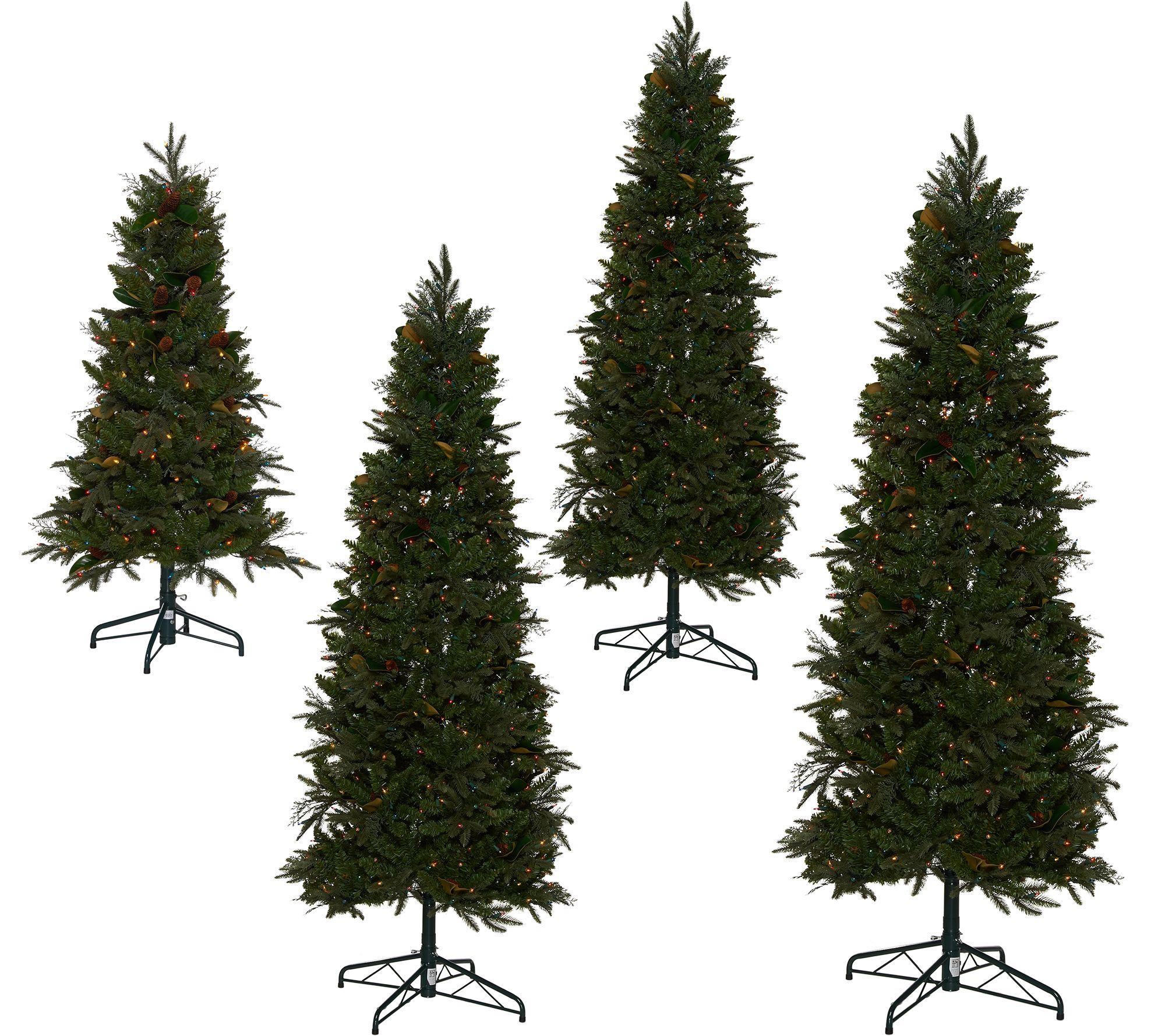 Bethlehem Lights Prelit Sitka Spruce Christmas Tree